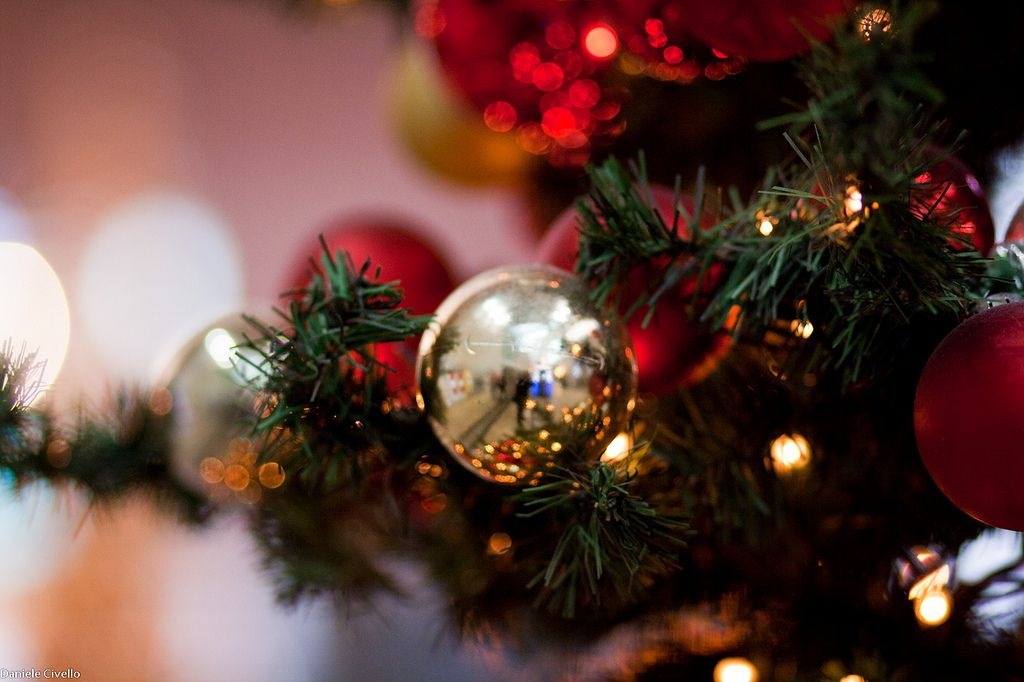 Christmas lasts forever : Photo