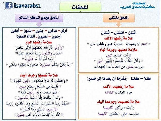 الملحقات الملحق بالمثنى والملحق بالجمع بنوعيه جمع المذكر السالم وجمع المؤنث السالم شرح Learn Arabic Alphabet Learn Arabic Language Arabic Alphabet For Kids