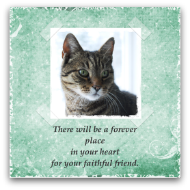 graphic relating to Free Printable Sympathy Card for Loss of Pet named No cost Pet dog Decline Sympathy Playing cards in the direction of Print. Cats, Canine, Horses