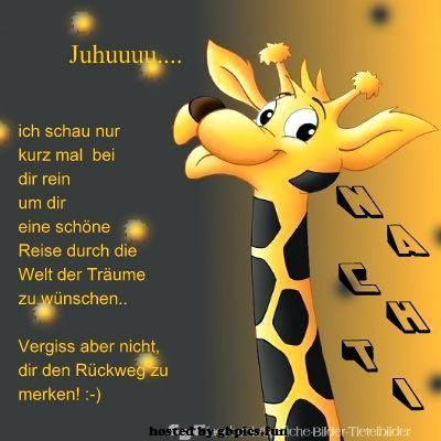 Gute Nacht Spruch Witzig Gute Nacht Spruche Gute Nacht Gute