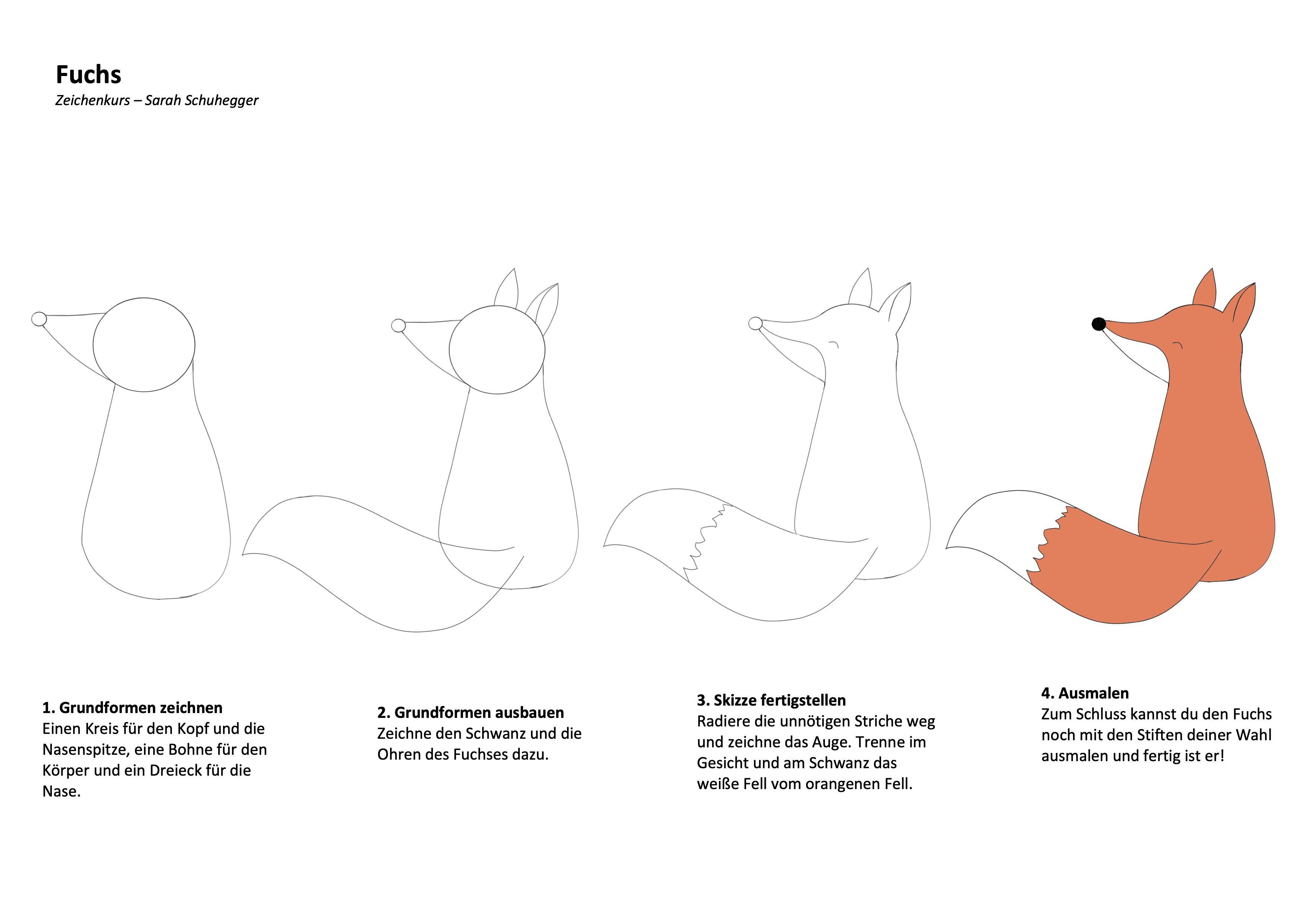 Fuchs zeichnen lernen mit Schritt-für-Schritt Zeichenanleitung