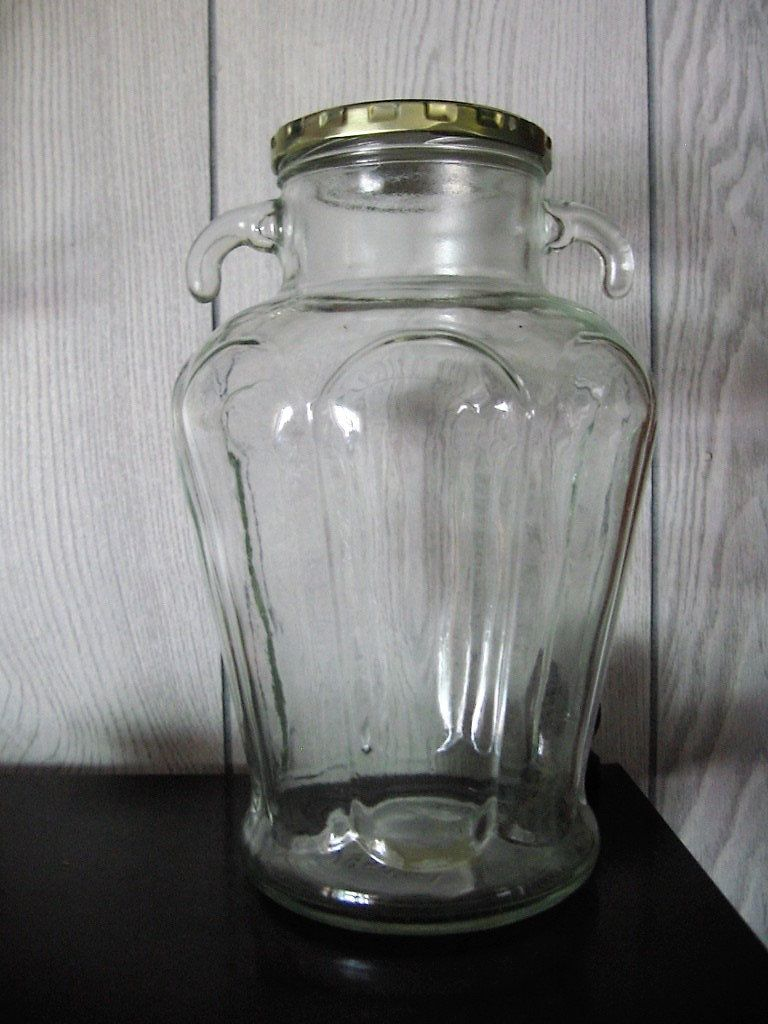 Clear Glass Jar Unique Ornate Double Handles Vertical Embossed