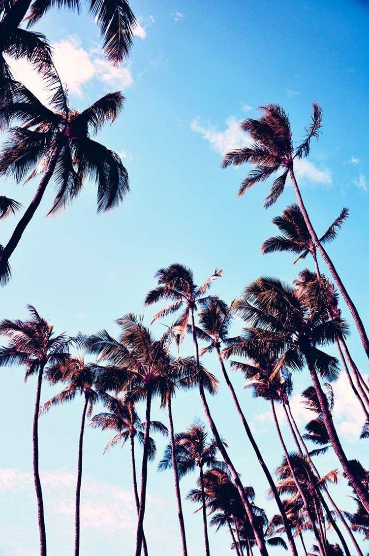 Summer Inspiration_04