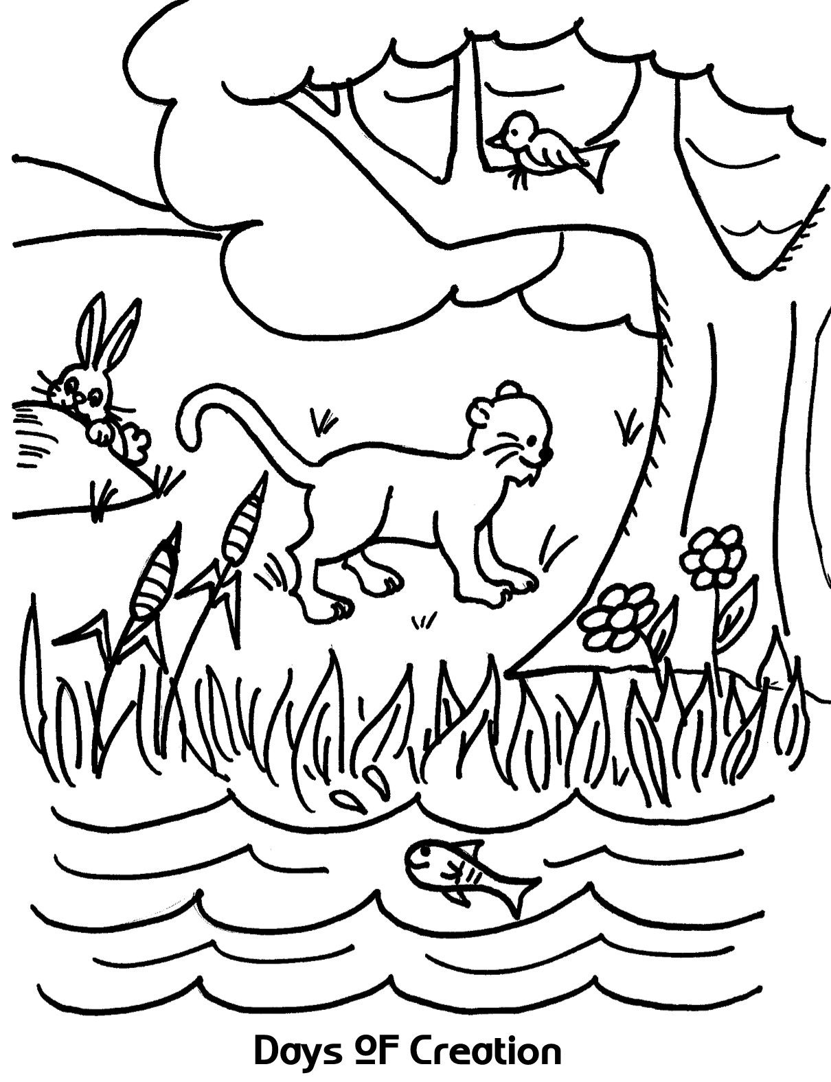 Free coloring pages about creation - Creation Day 6 Coloring Page Sketch Coloring Page