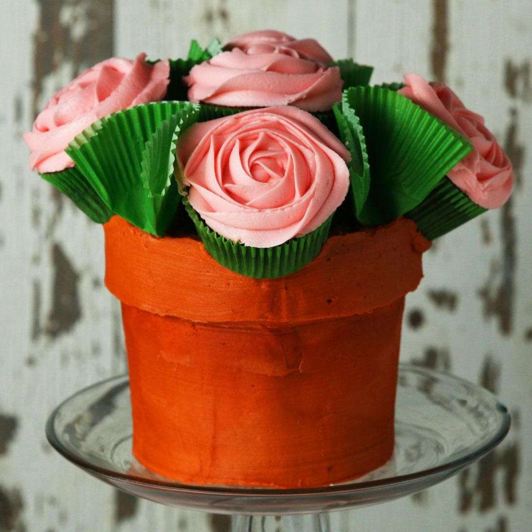 Flower Pot 'Box' Cake Recipe Pot cakes, Flower pot