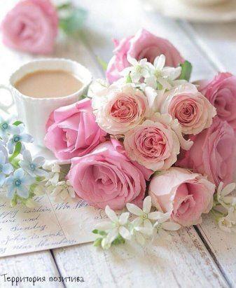 Идеологические корни моего мировоззрения..;-) | Розовые ...