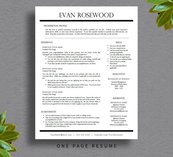 Professional Resume Template for Word \ Pages, Resume Cover Letter - free resume template download