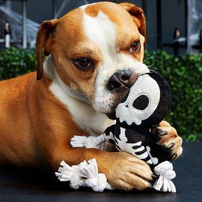 BARK Skeleton Dog Toy - The Grim Squeaker, Black | Pet ...