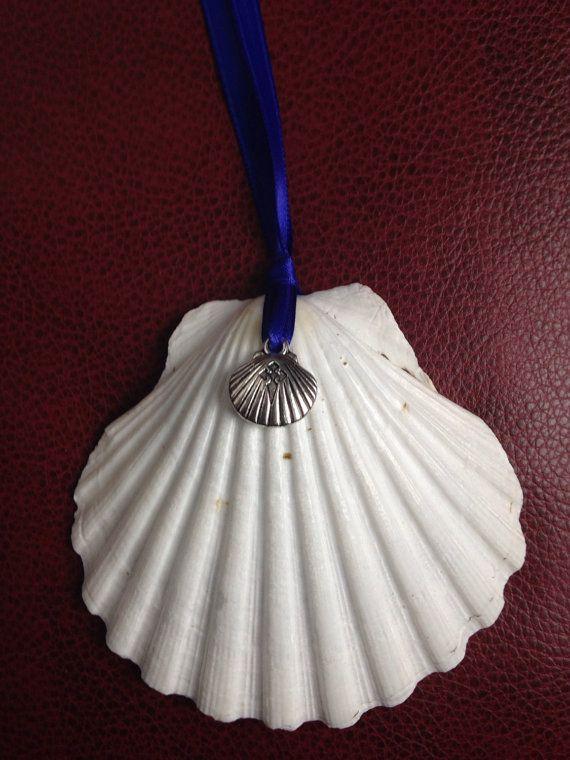 Scallop Shell Symbol Of The Camino Pilgrimage To Santiago De