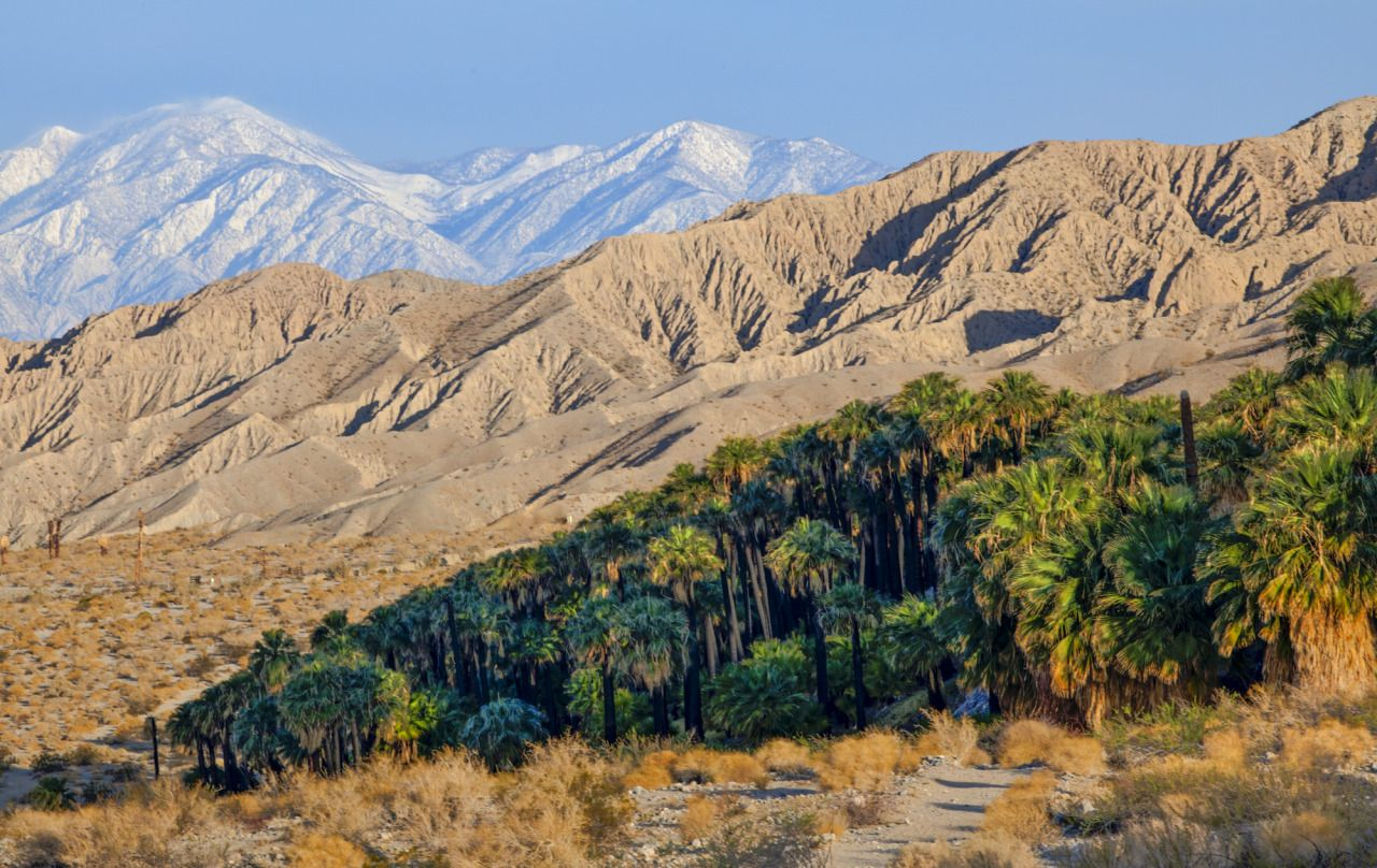 Sand to Snow National Monument, BLM California, by Bob Wick, BLM