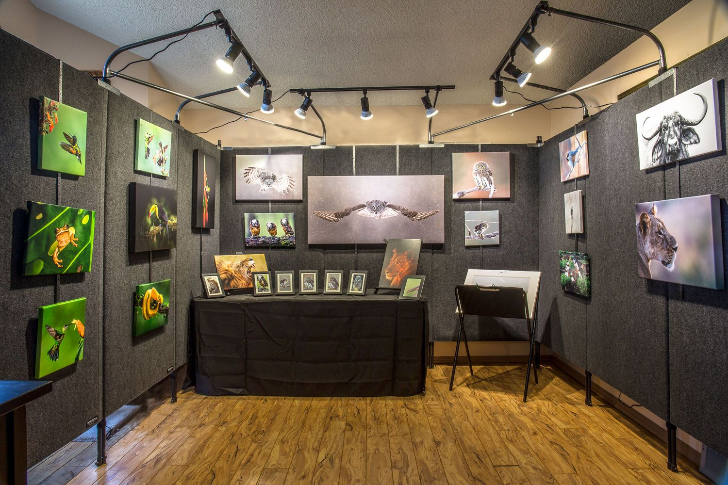 Grey Ghost Nature #propanels Art Show Booths
