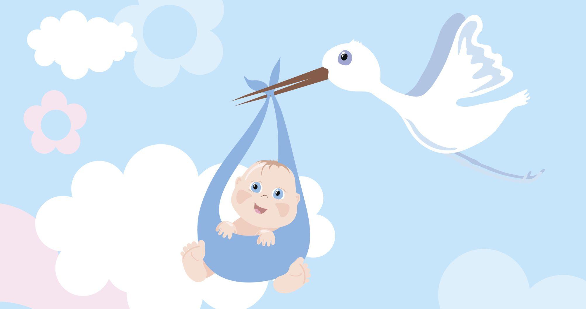 La Cigüeña Del Bebé