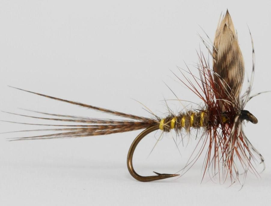 6 March Brown Dun Western Trout Dry Flies