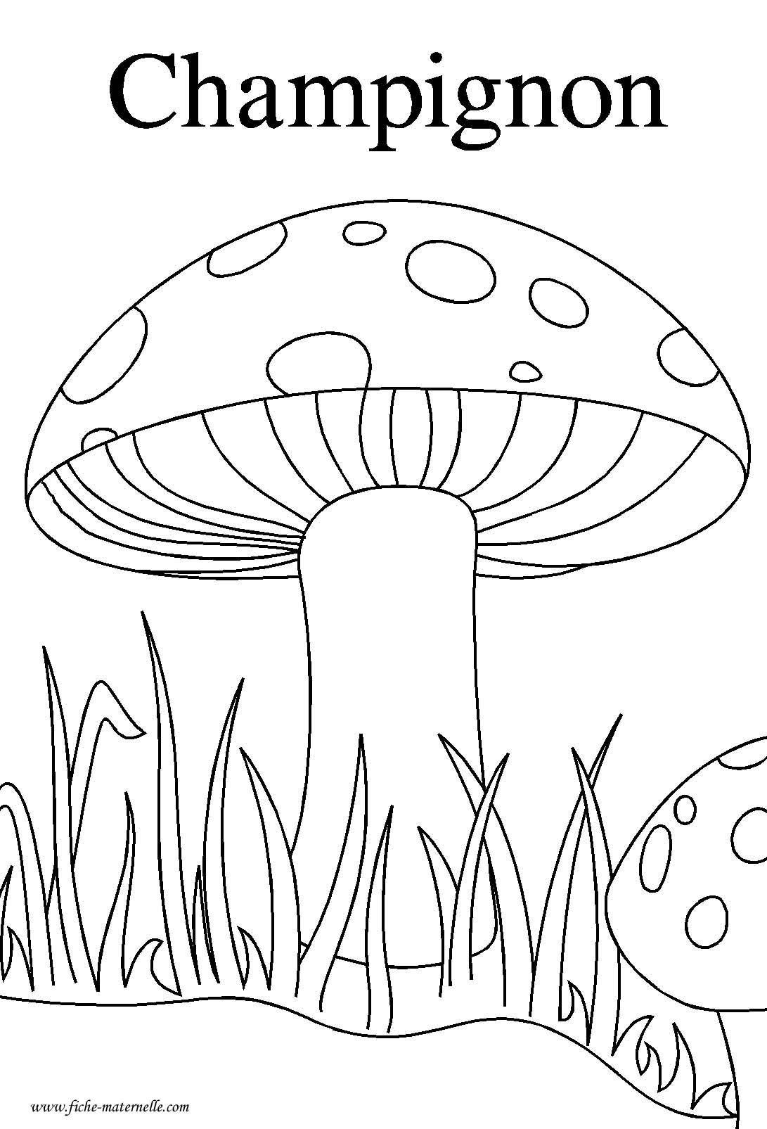 Ressources p dagogiques puzzle sur le th me de l 39 automne en maternelle ddm pinterest les - Activite automne maternelle ...