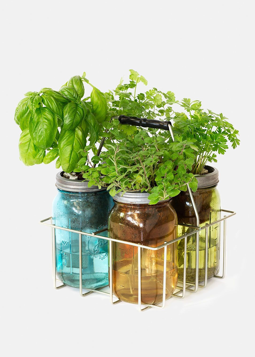 These Self Watering Herb Kits Are Simple To Use Sustaining And