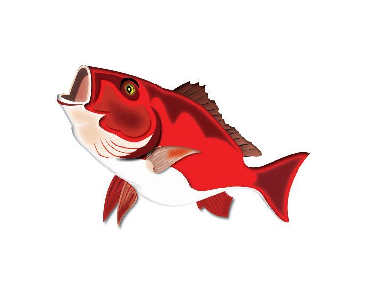 My vector art version of a Salt Water Fish