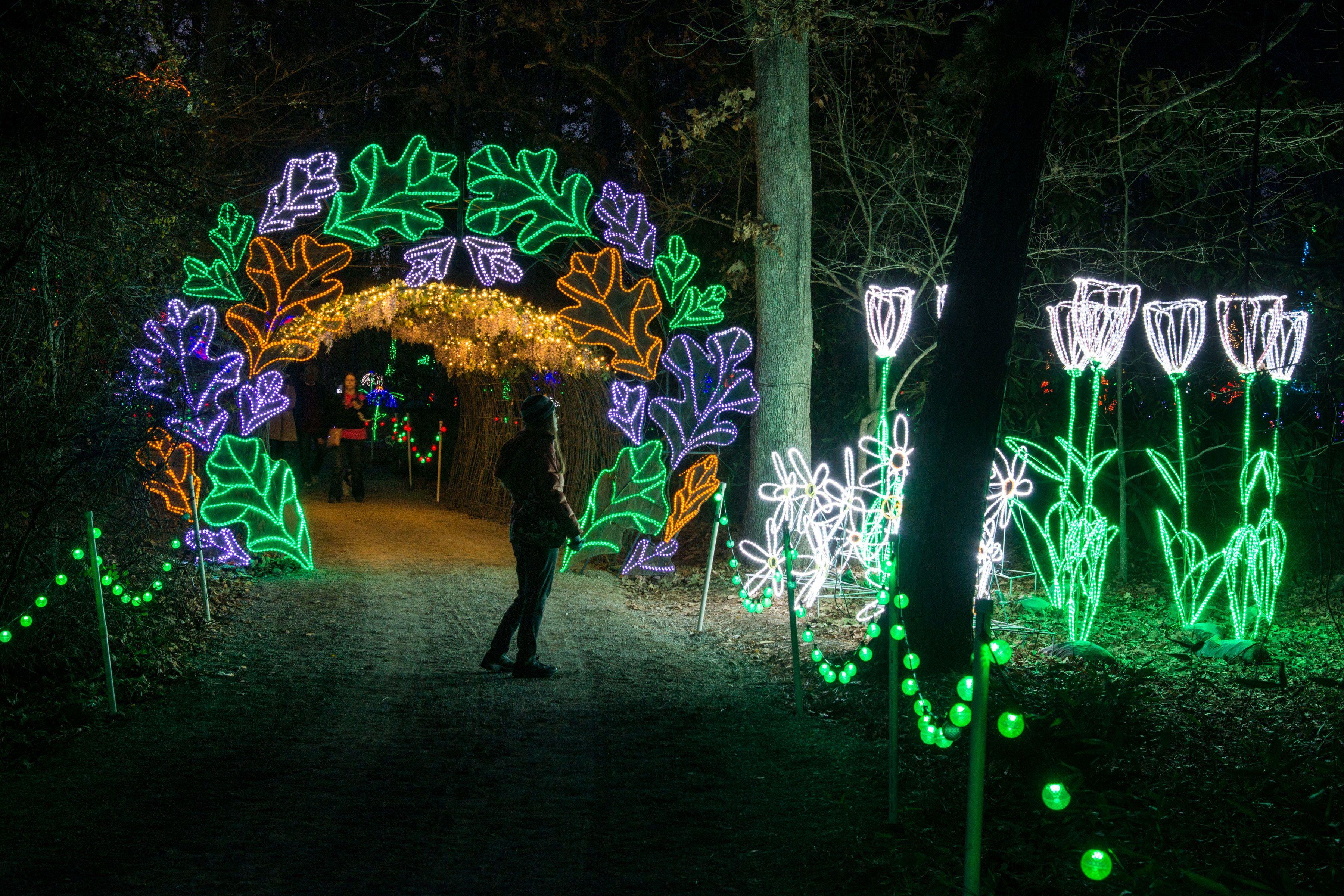 7081c9267cd79057b6663738e7f86761 - Garvan Gardens Hot Springs Christmas Lights