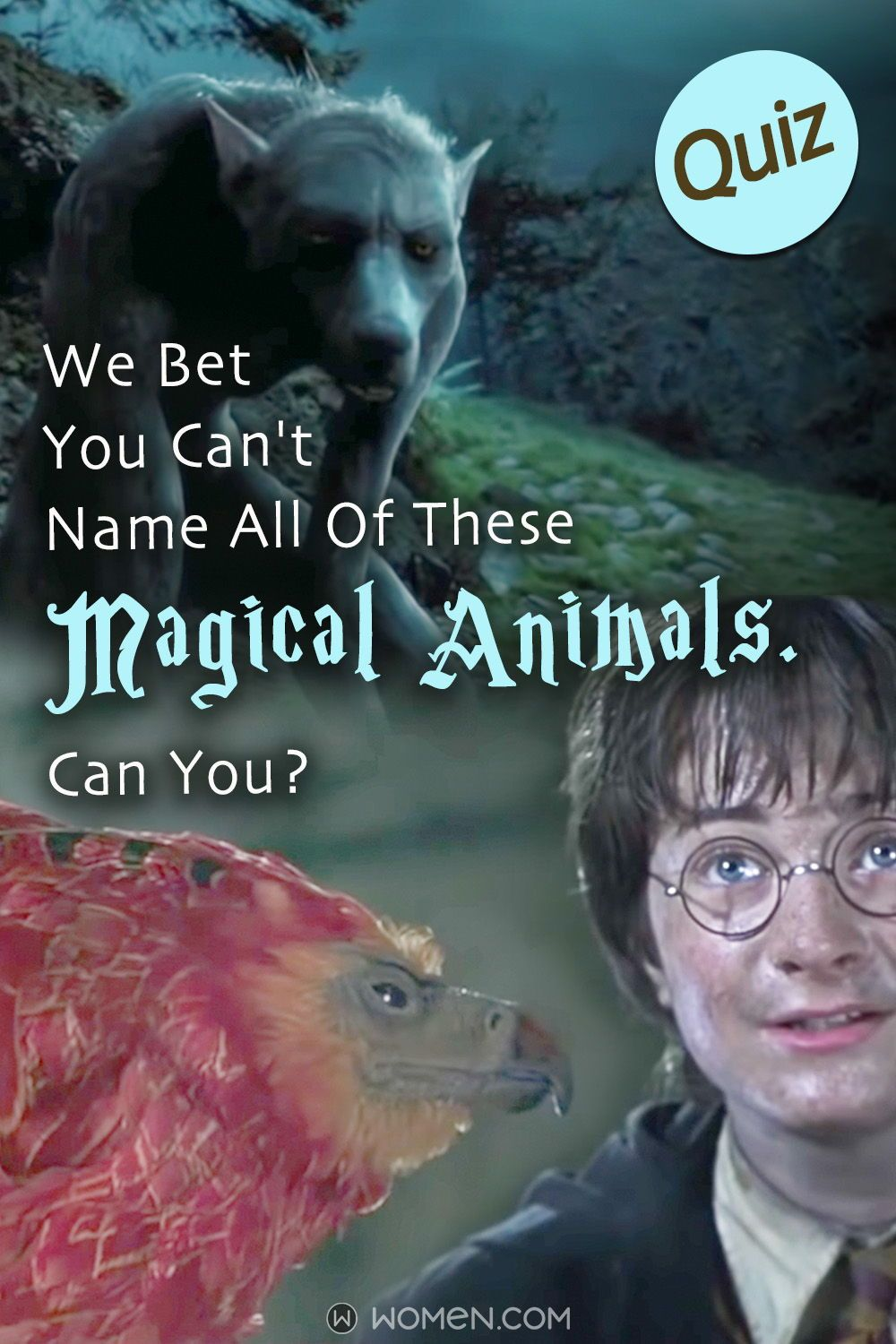 Quiz We Bet You Can't Name All Of These Magical Animals