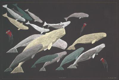 Beluga Whales by Inuit artist Tim Pitsiulak, 2011