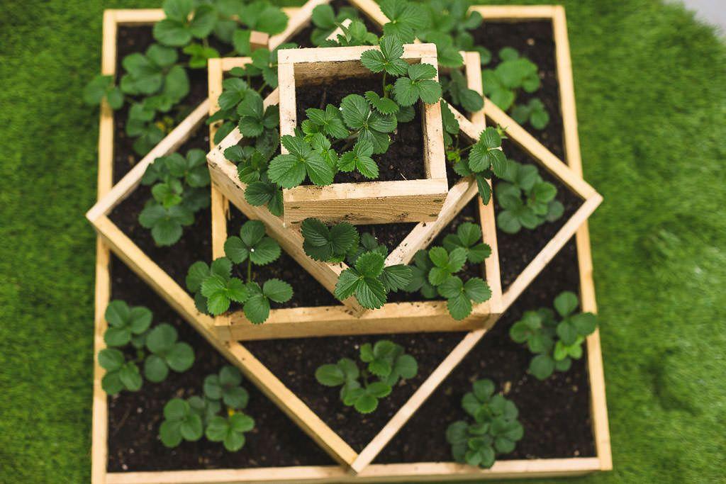 How to build a strawberry planter strawberry planter
