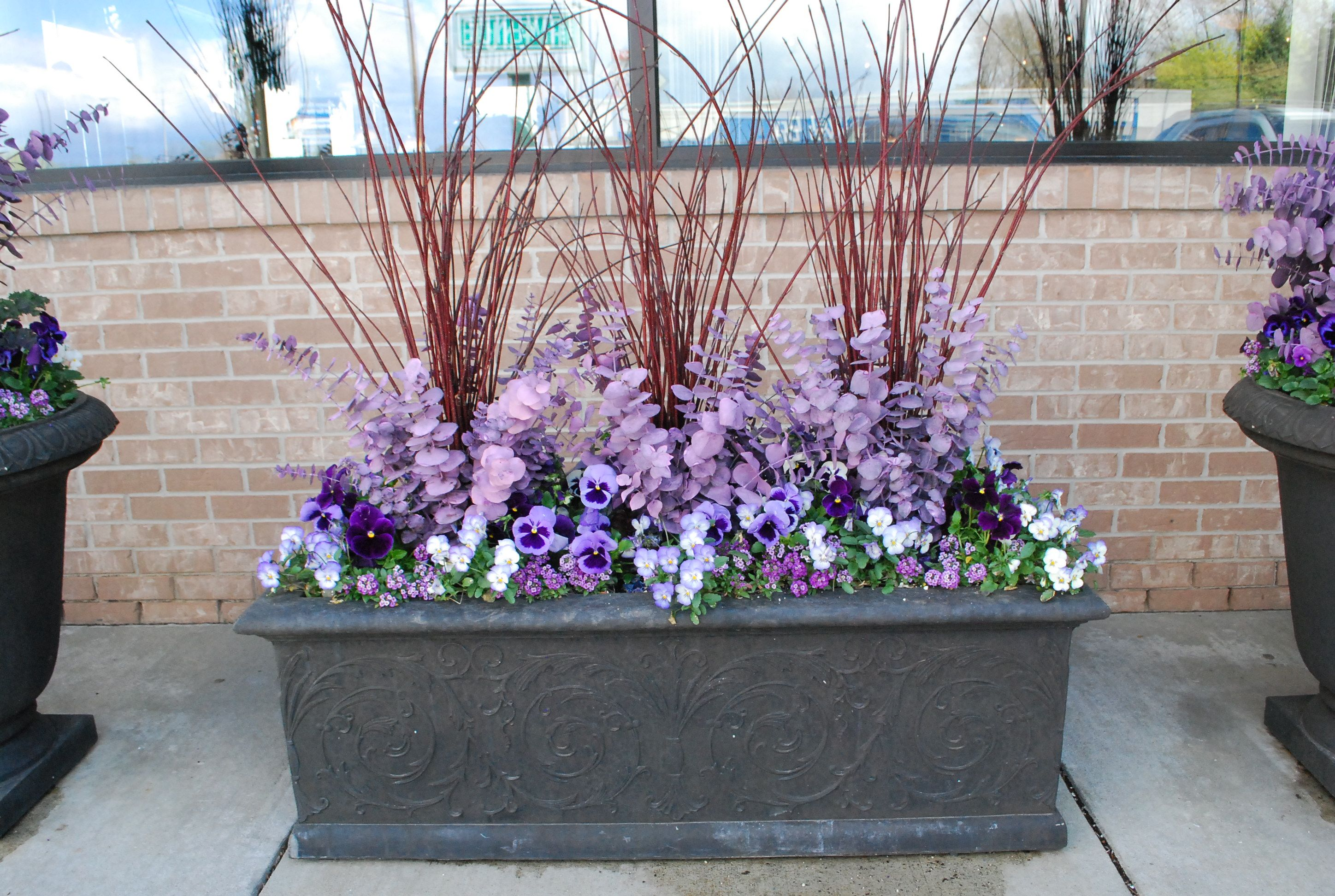 Spring Planting With Lavender Eucalyptus Deborah Silver Spring Planter Container Gardening Flower Planters