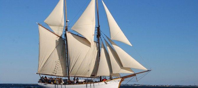 Meeting the Odyssey: l'Odissea sostenibile e contemporanea, tra Mar Baltico e Mar Mediterraneo