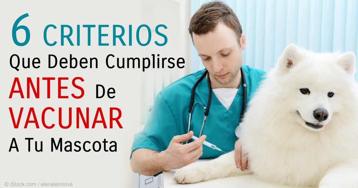 Los dueños de mascotas bien informados insisten en pruebas de anticuerpos para medir la inmunidad y niegan la revacunación innecesaria y potencialmente riesgosa http://mascotas.mercola.com/sitios/mascotas/archivo/2015/08/01/inmunizacion-de-mascotas.aspx
