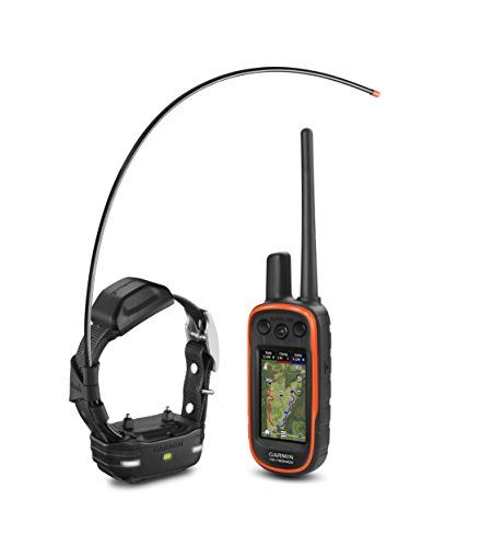 Garmin Alpha 100 Tt 15 Mini Bundle Mini Dogs Best Dog Training