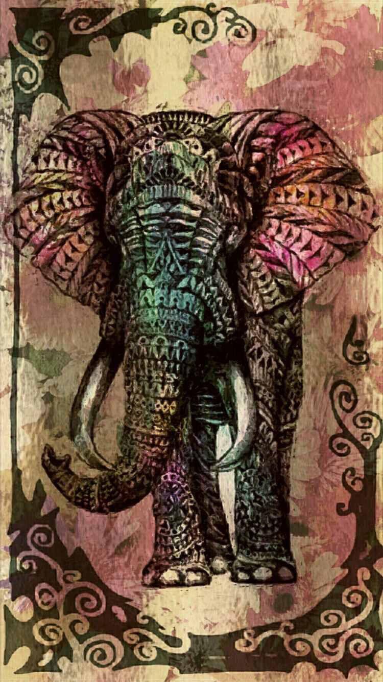 Elephant Wallpaper Fondos De Pantalla Elefantes Mandala