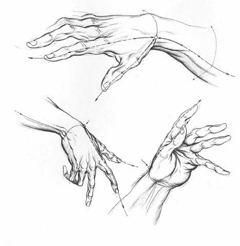 Understanding Motion Burne Hogarth Drawing Dynamic Hands 13