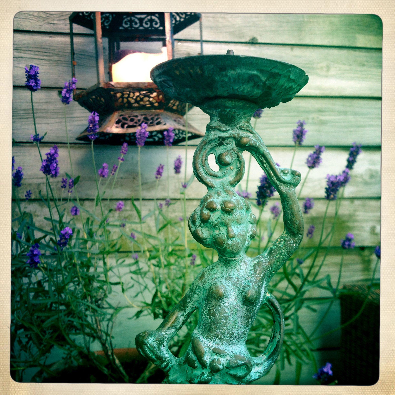 Lavendel forever