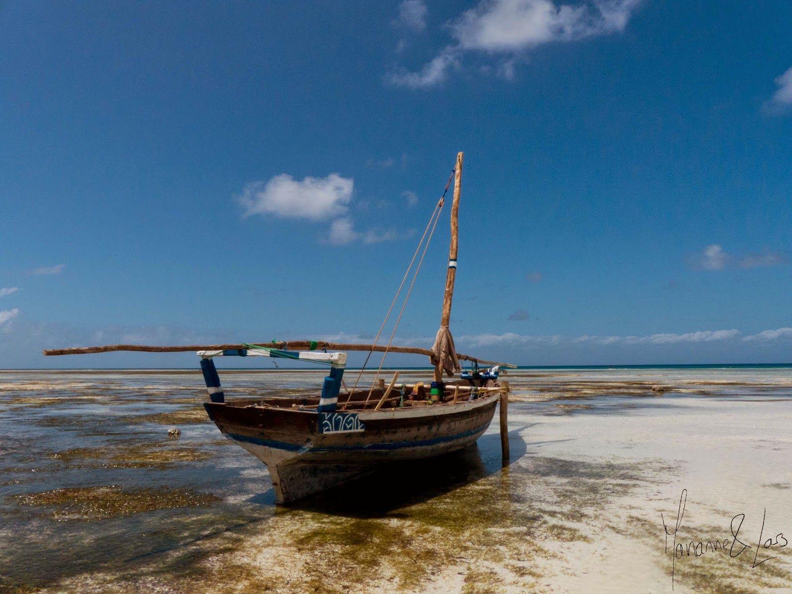 Vårt år på Zanzibar: TuristTid - Kizimkazi