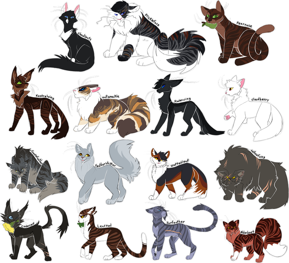 Every Thunderclan Medicine Cat Ever! by Draikinator on