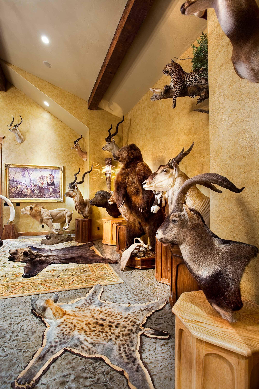 Trophy Room Design Ideas: THE ULTIMATE SPORTSMAN LODGE - Locati