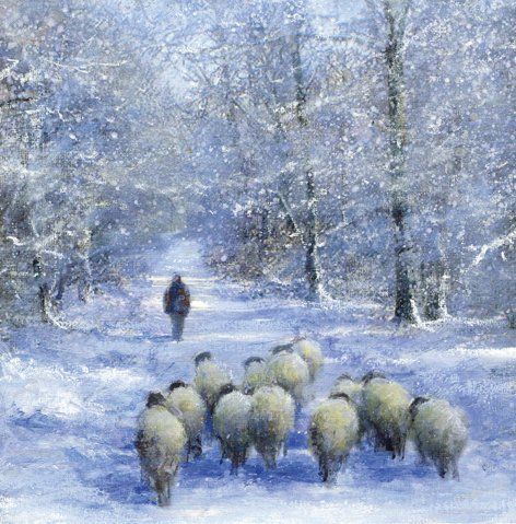 Picture Poster Animal Art White Sheep in a Snow Covered Field Framed Print