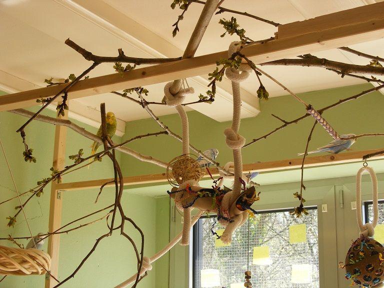wellibaum naturholzstangen sitzbrett wellis besch ftigung freisitz spielen vogel. Black Bedroom Furniture Sets. Home Design Ideas