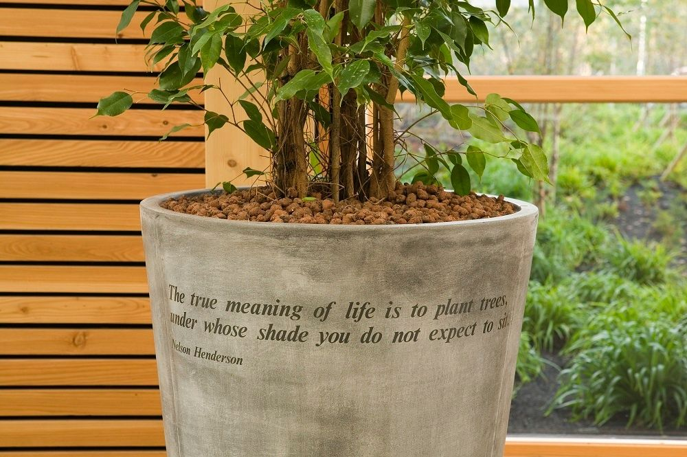 Quote about plants on eco friendly plant container