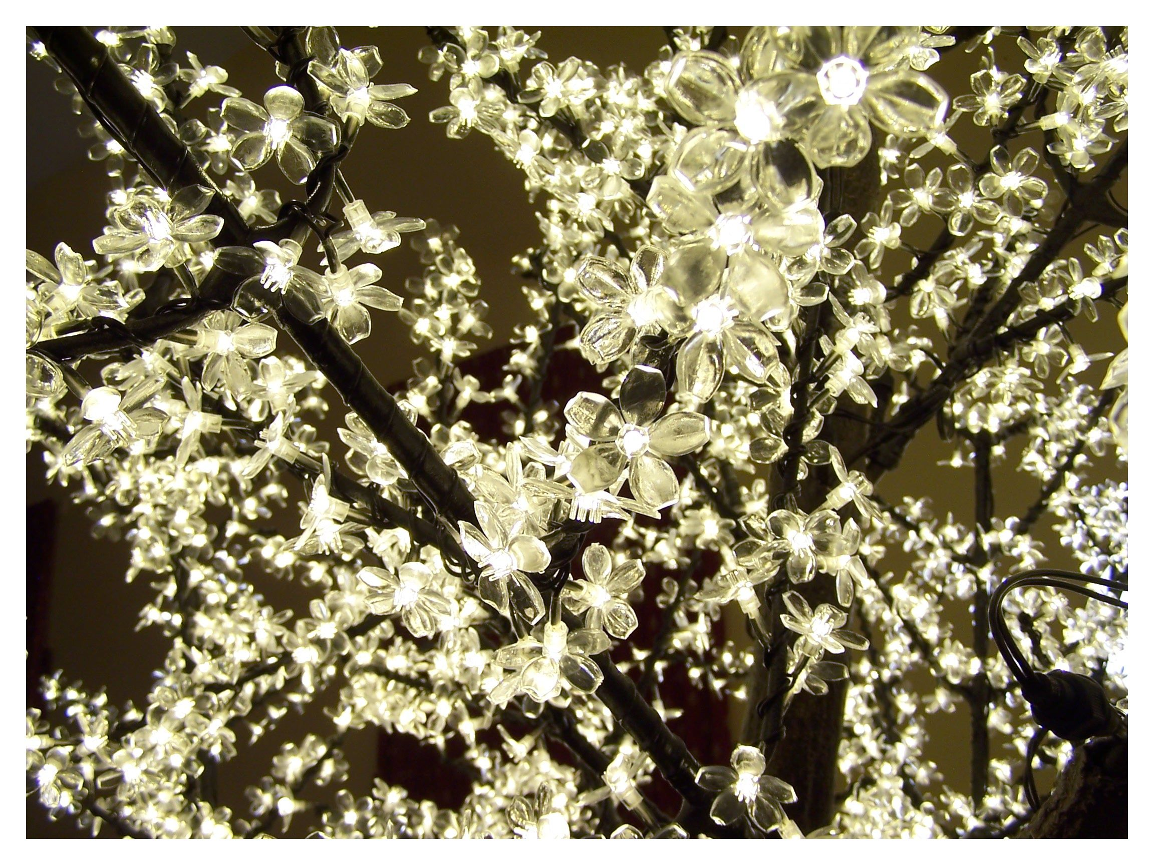 Stunning Led Lit Cherry Blossom Tree Which Is 3 Metres Tall By 2 1 2 Metres Wide Illuminate Your Wedding Venue A Cherry Blossom Tree Wedding Venues Led Lights