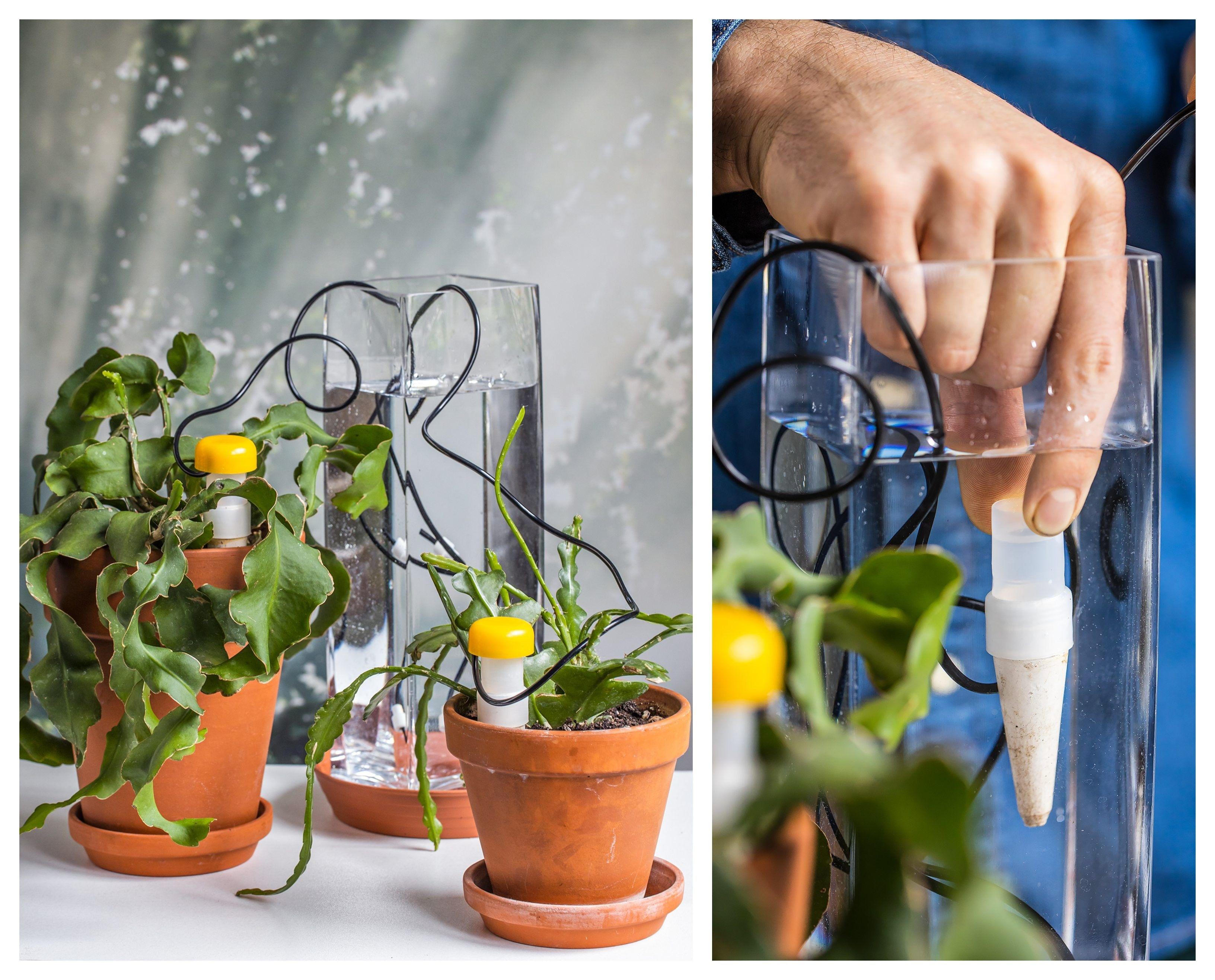 Latwe Podlewanie Roslin W Czasie Urlopu Planters Planter Pots Pot