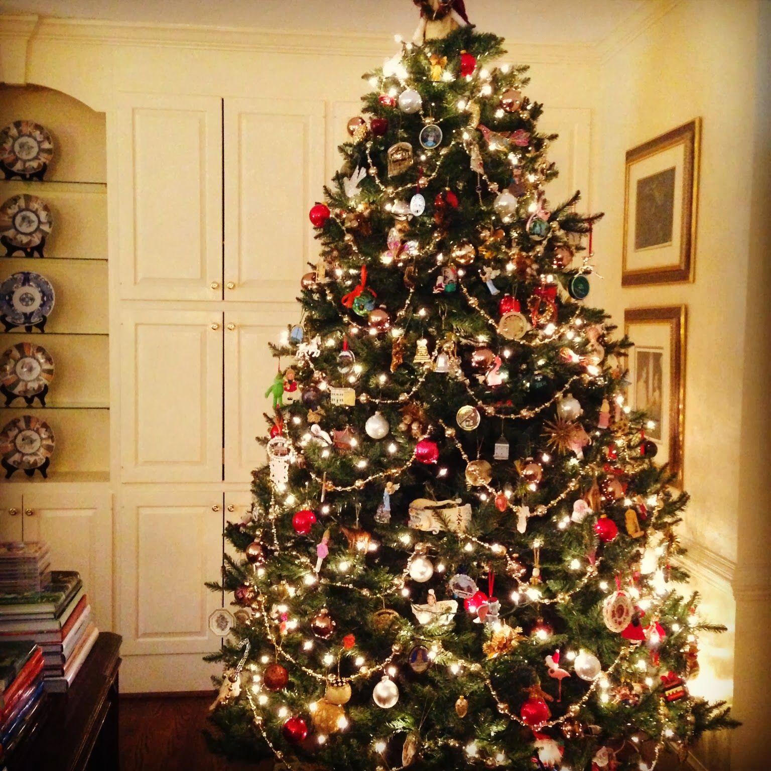 Christmas Trees By Mirkamojzisova