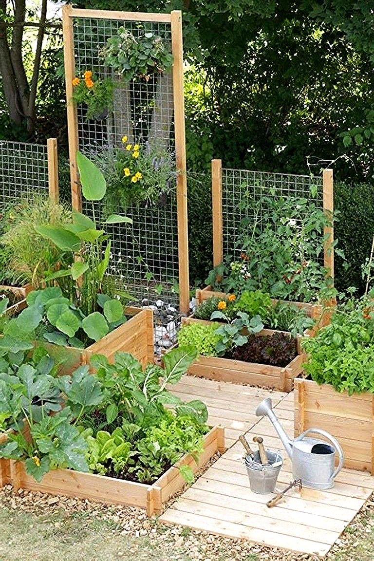 30 Exciting Small Backyard Landscaping Ideas On A Budget Backyard Backyardlands Small Backyard Landscaping Backyard Vegetable Gardens Small Vegetable Gardens