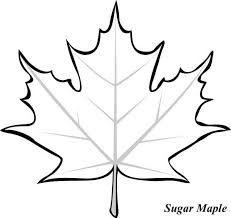Image Result For Simple Maple Leaf Drawing Kasnak Sanati Quilling Tasarimlari Aplike Sablonlari