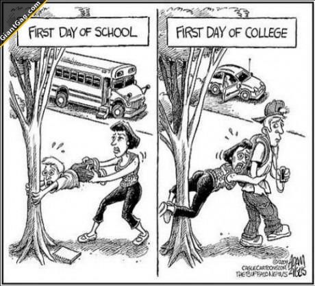 Education/ The Difference Between High School And College term