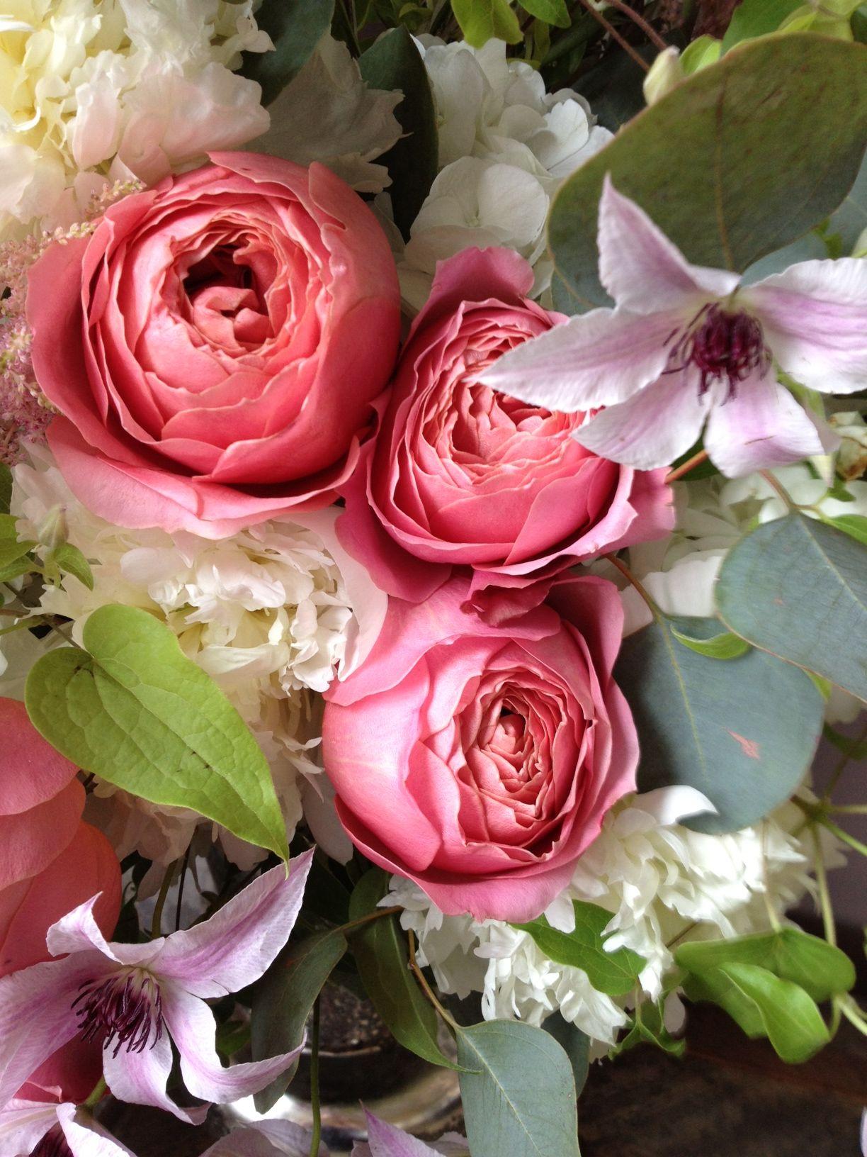 Garden rose & clematis | In Bloom | Pinterest | Clematis, Gardens ...
