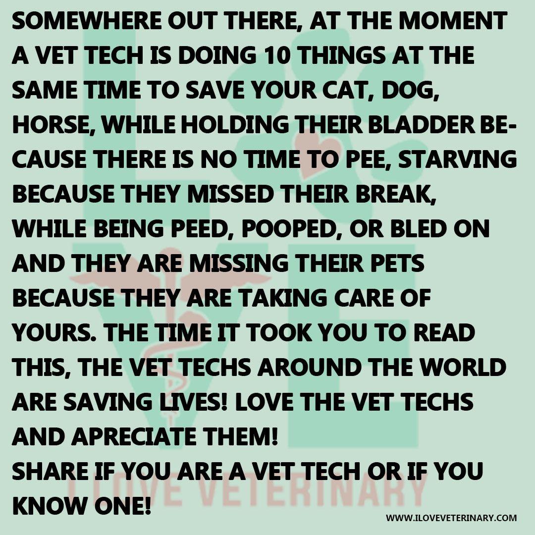 Tag Your Favorite Vet Tech D Happy Vet Tech Appreciation Week Vet Tech Quotes Vet Tech Vet Tech Humor
