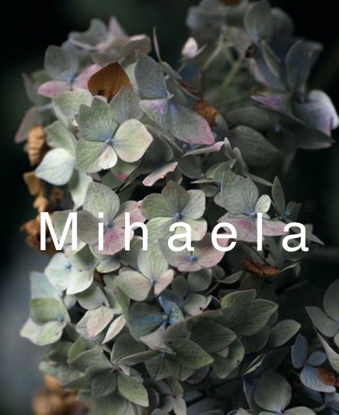 Mihaela Traditional And Unique Baby Name Baby Girl Names Girl