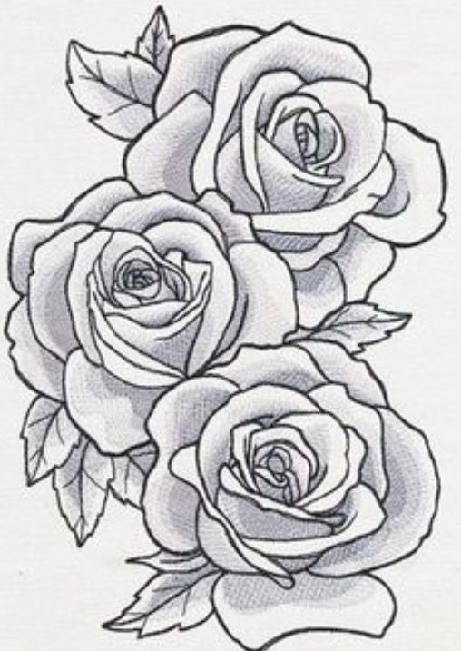 Pin By Ana Kovcic On Sve Roses Drawing Rose Drawing Tattoo Outline Drawings