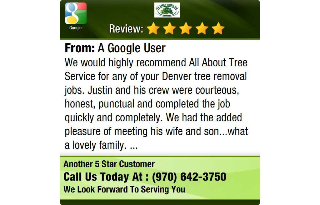 We would highly All About Tree Service for any