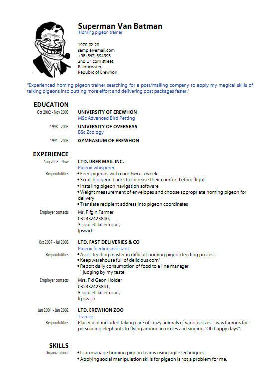 Resume Template Pdf Download Sample Resume Templates Pdf Resume - it trainer sample resume