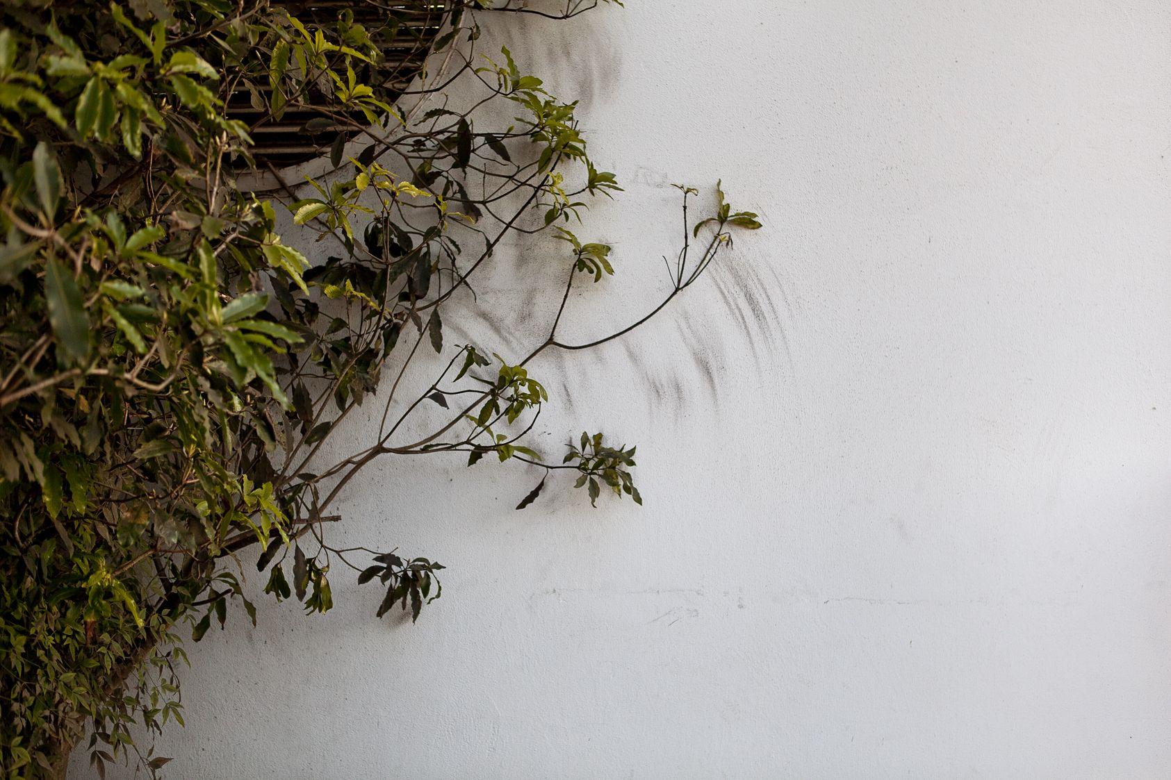 Luke Turner 'Pollution Painting'